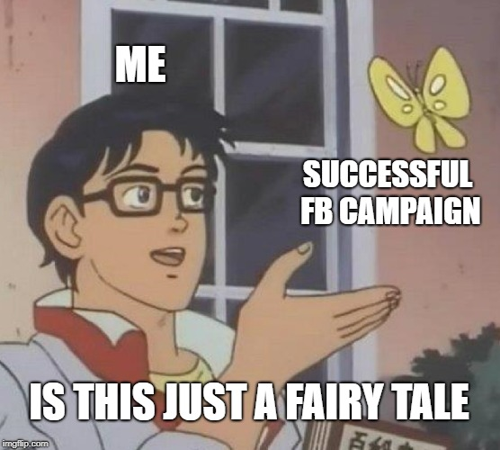 Successful FB Campaign.jpg