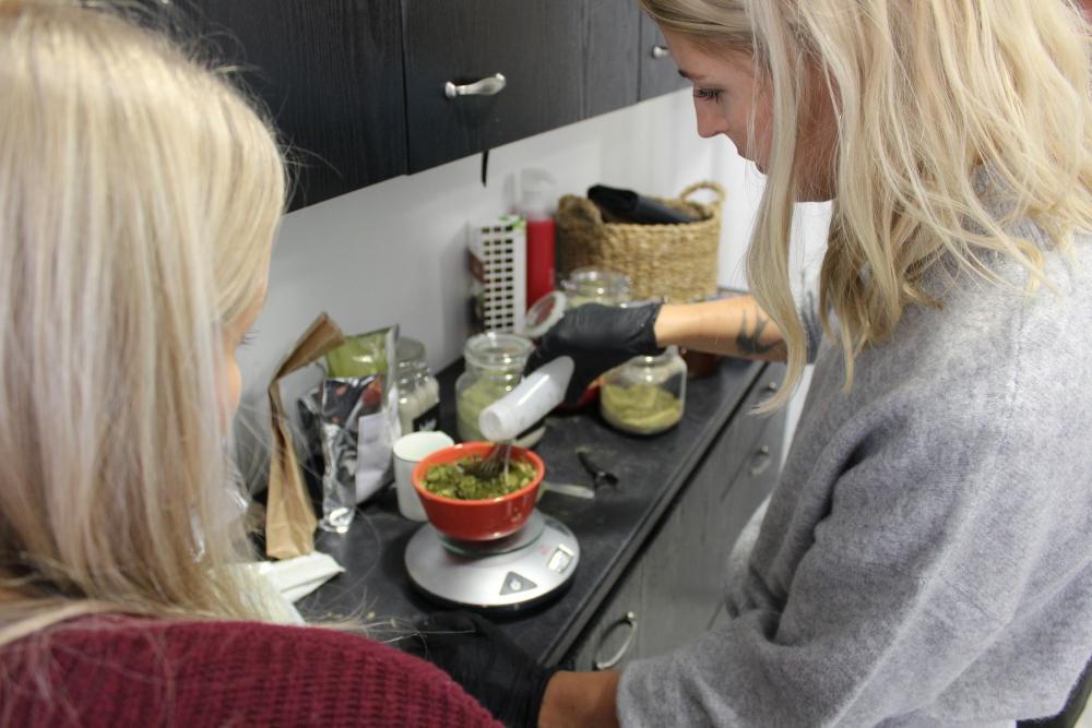 Mari ja Sofi mittaamassa kasvivärejä.jpg