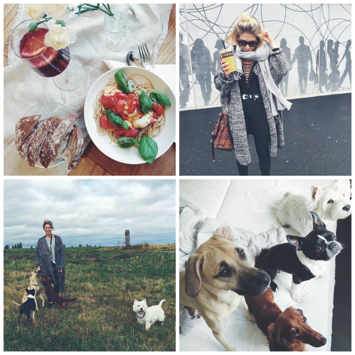 PicMonkey Collage34.jpg