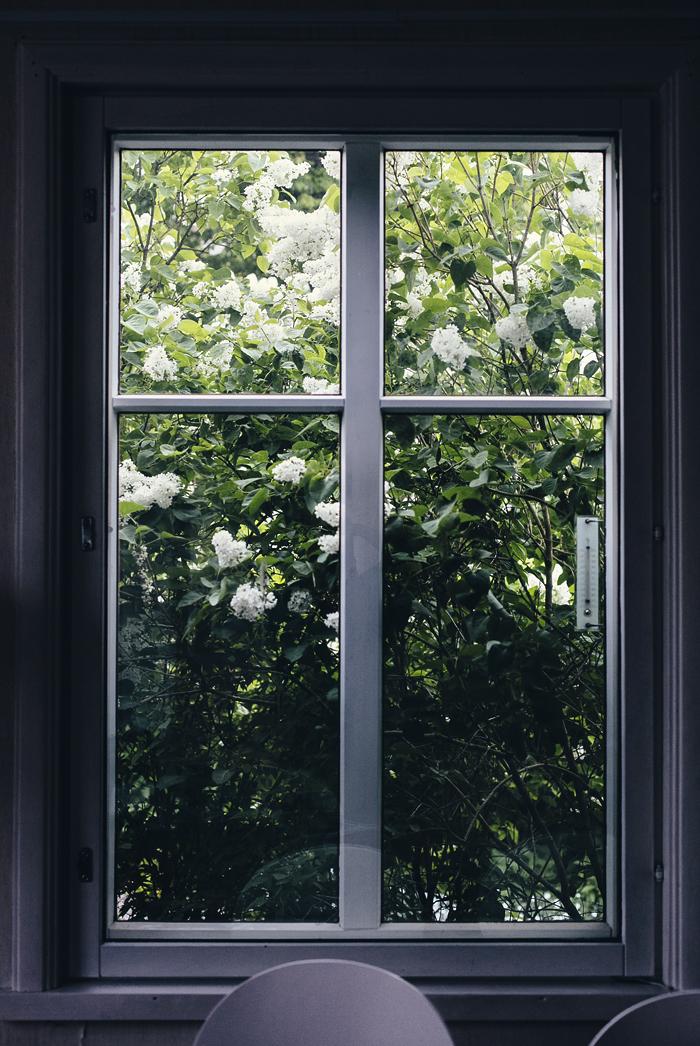 ikkunasta_suvisurlevif.jpg