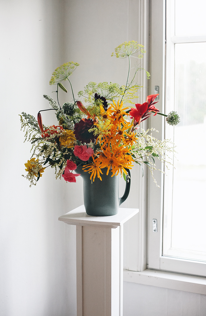 Takes from the flower diary: warm colors