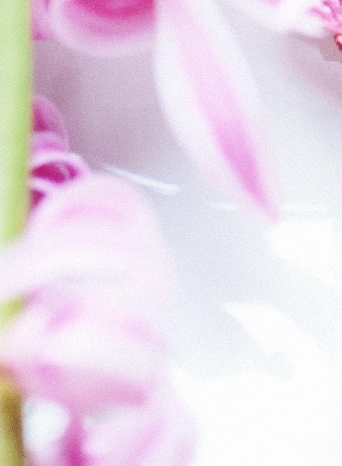 pink1_suvisurlevif.jpg