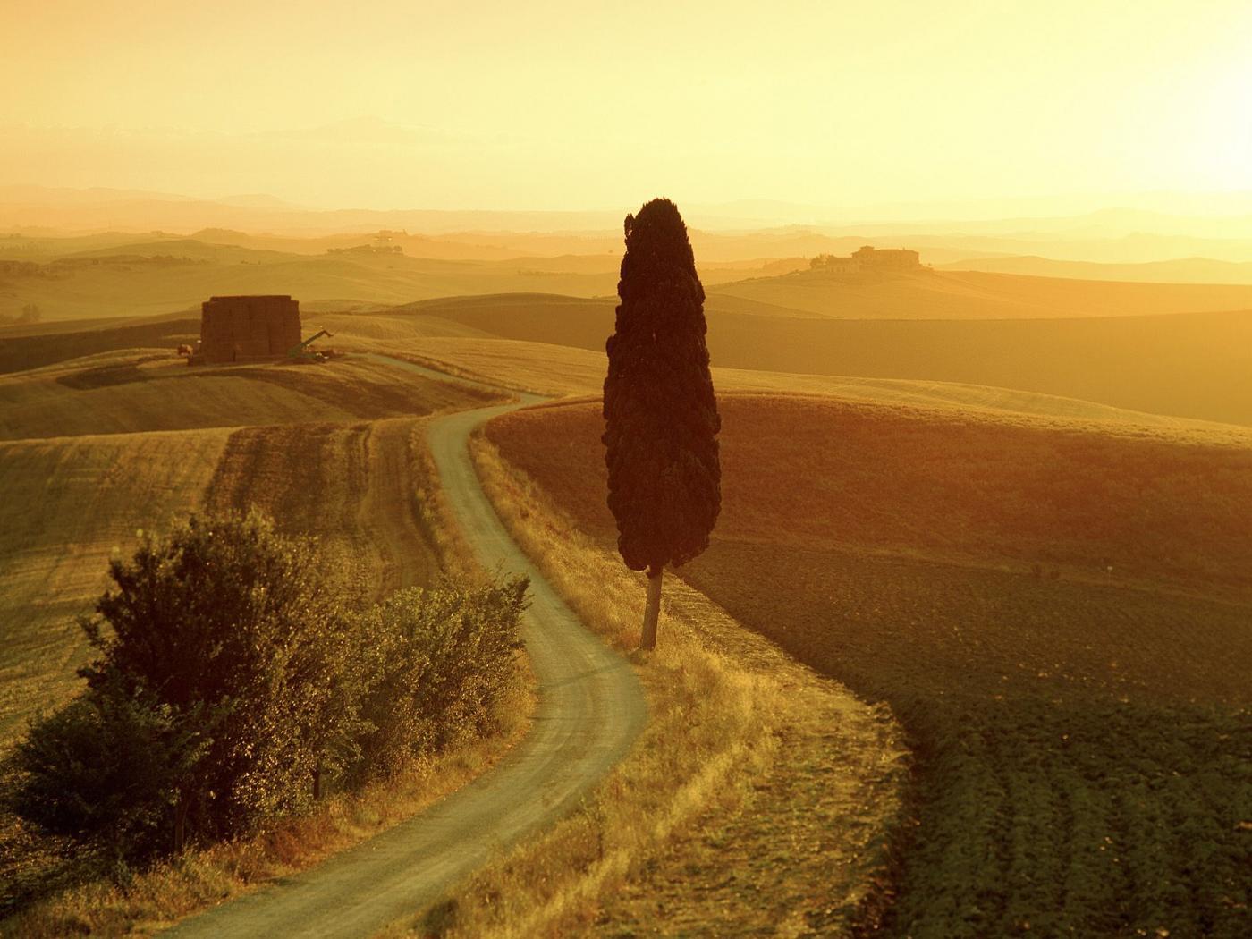 tuscan20landscape20at20sunrise20italy.jpg