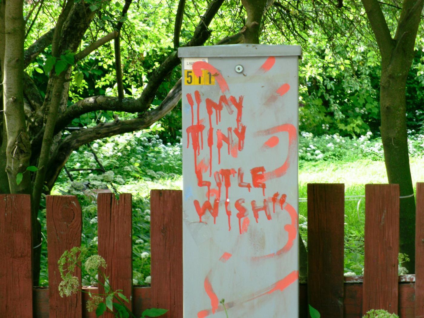 litle_wish.jpg