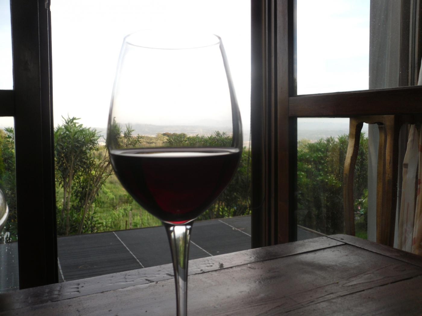 viinilasi.jpg