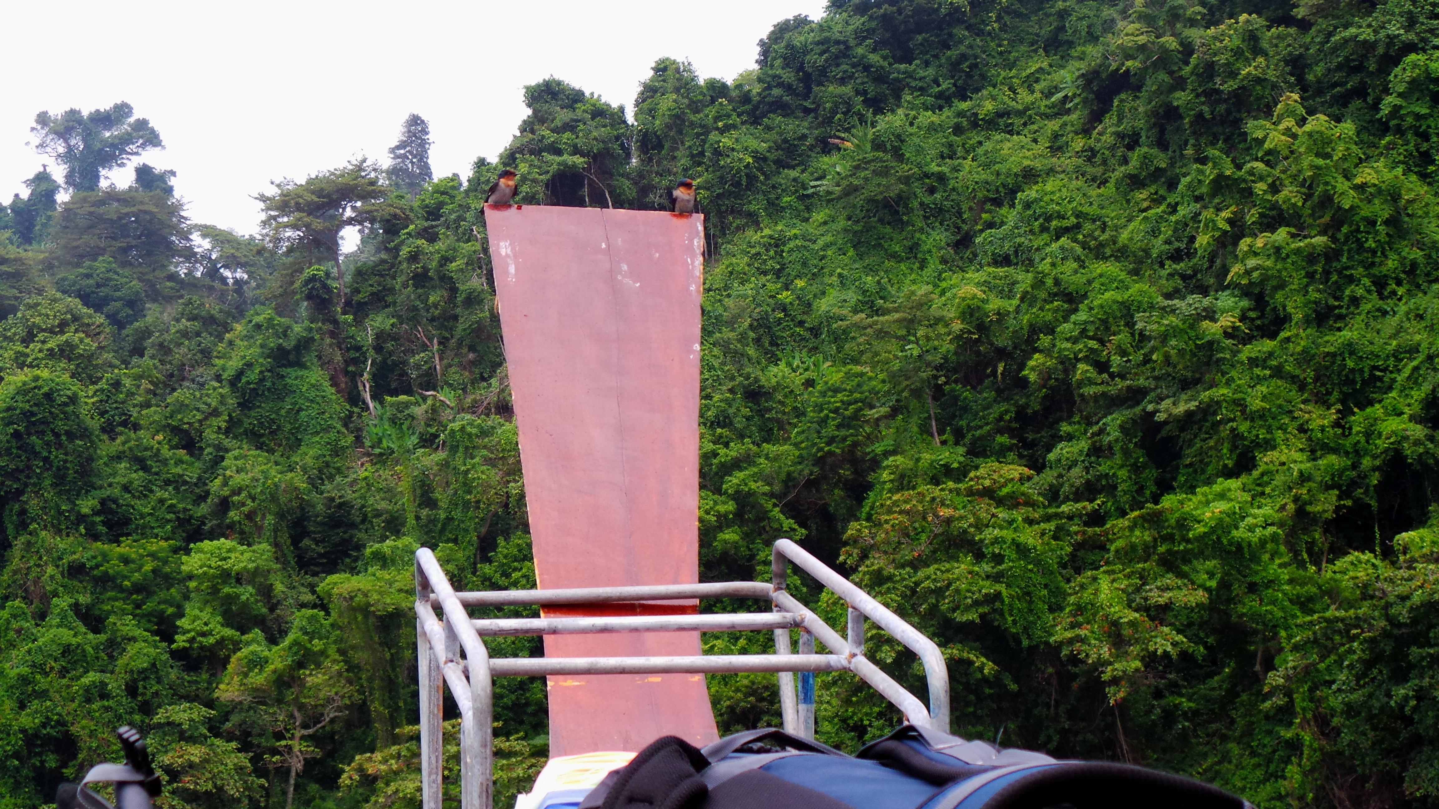 Puutalobabyn Thaimaa-matkaopas, osa 3: Koh Kradan