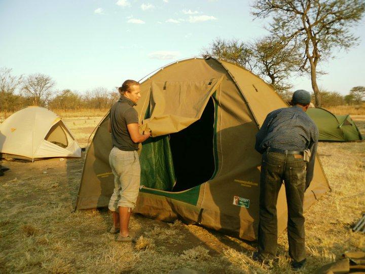 teltta serengeti.jpg