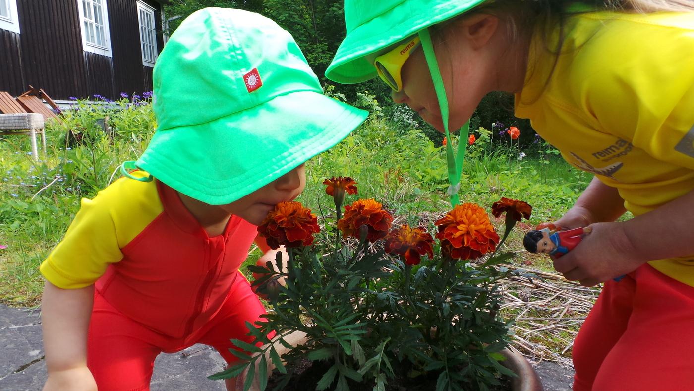 kukkien tuoksuttaminen.JPG