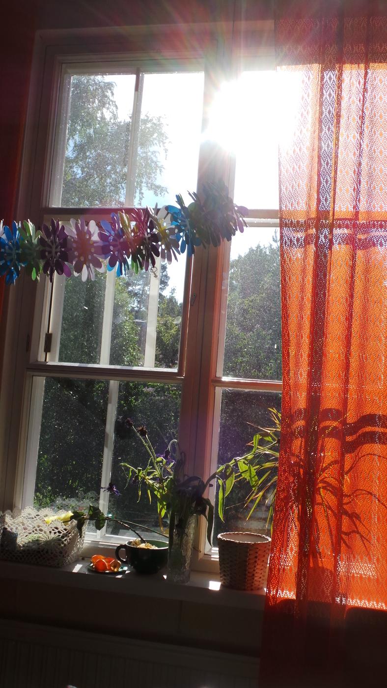 ikkunoiden pesu.JPG