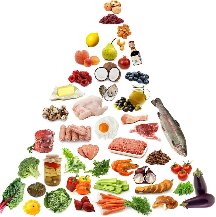 paleo_food_pyramid.jpg