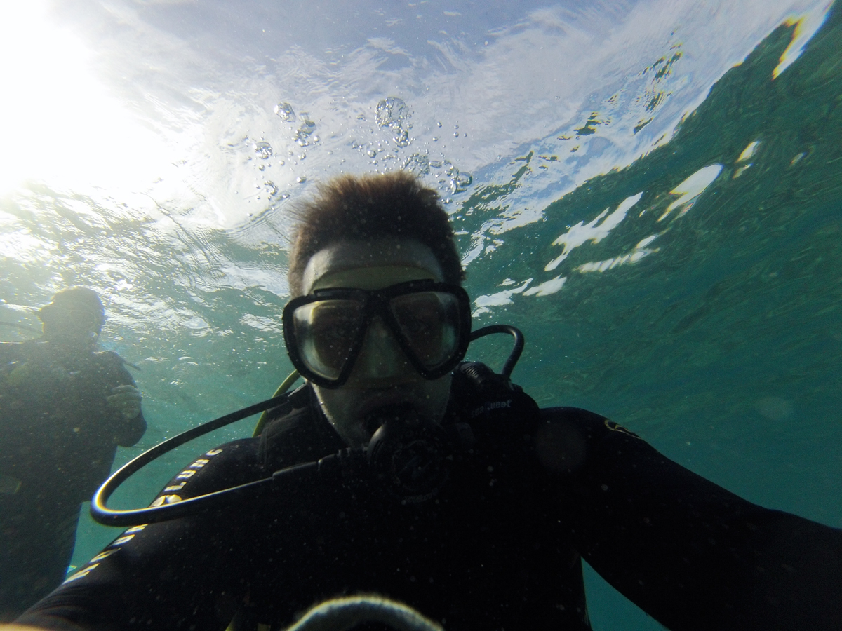 dive2.jpg