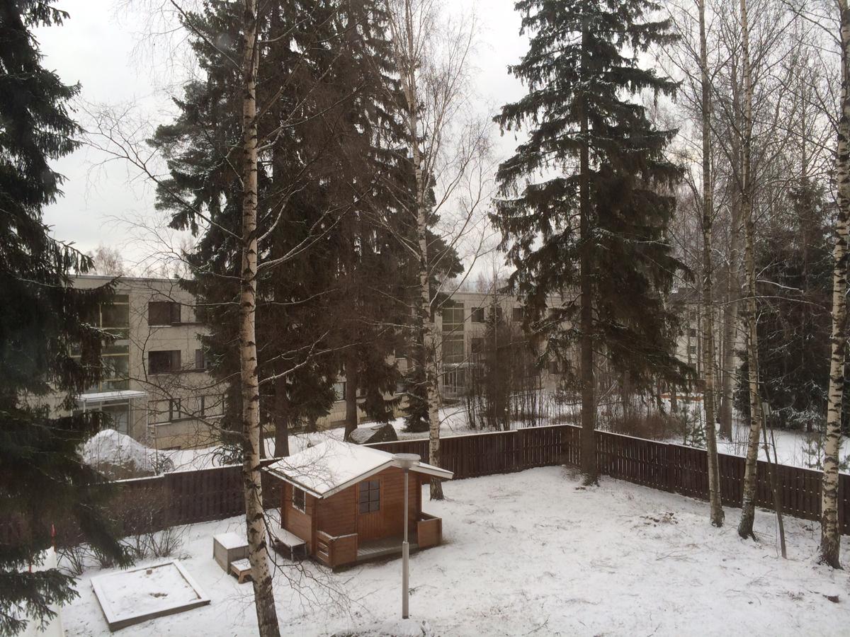 Kaikki on parempaa lumessa!
