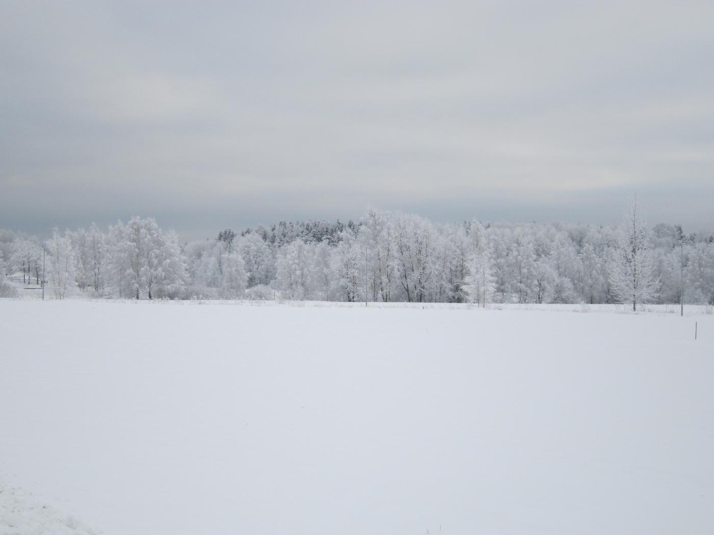 Talvi on myös kaunista