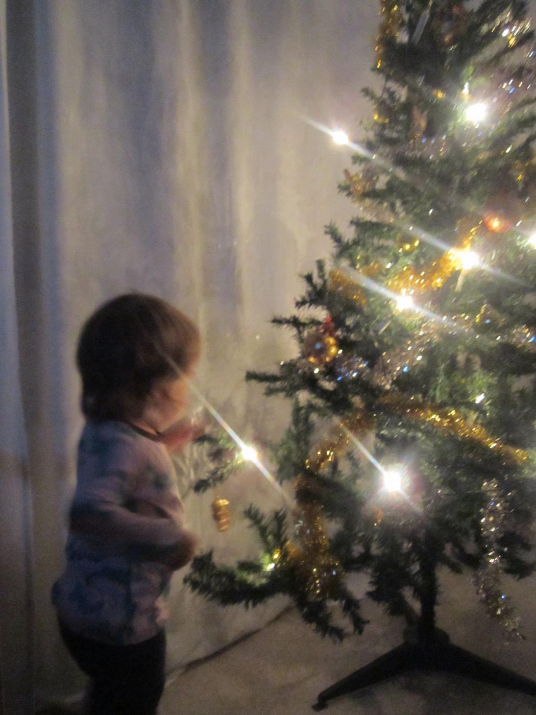 joulukuun_18._2012_112.jpg