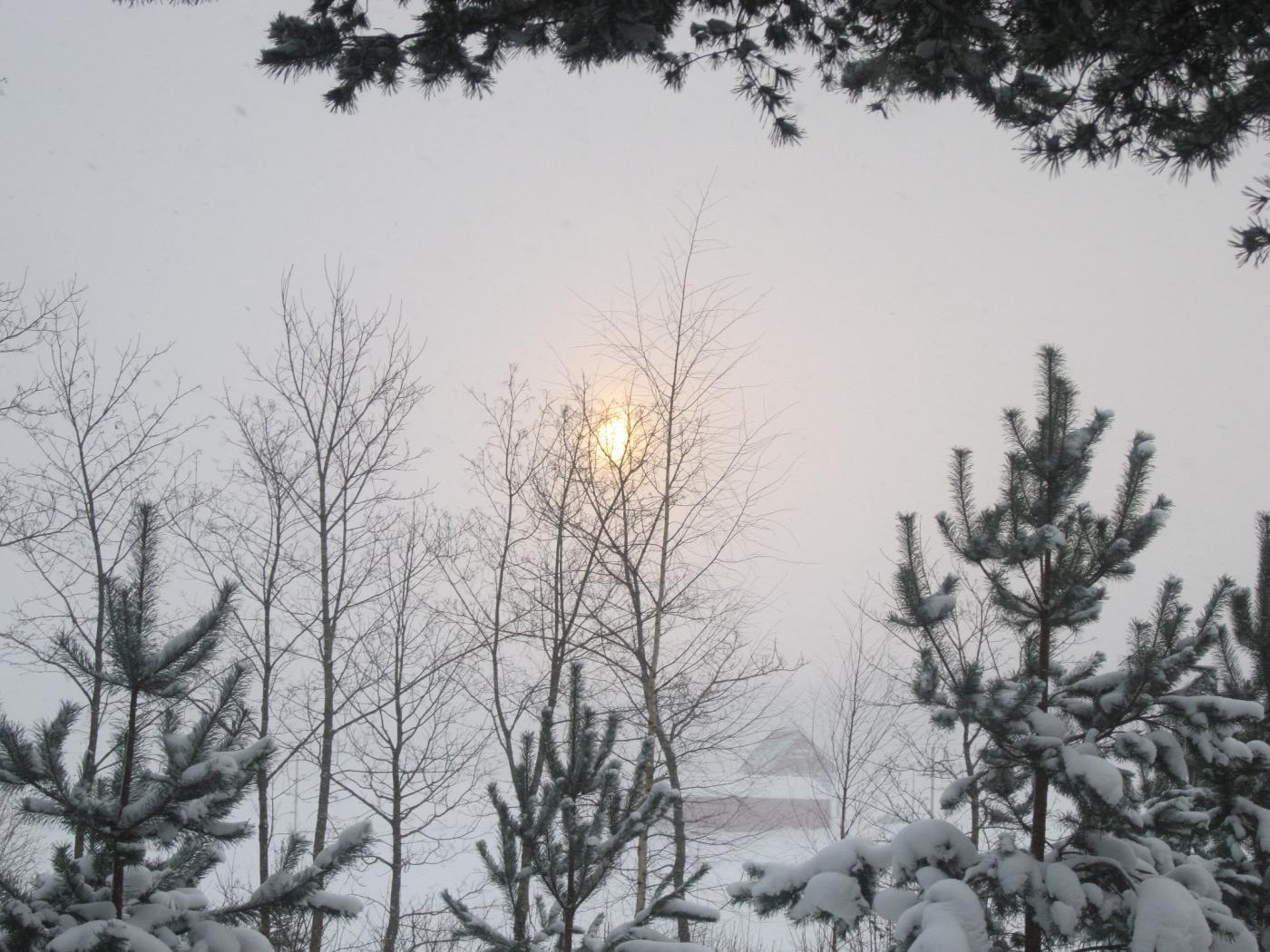 joulukuun_25._2012_010.jpg