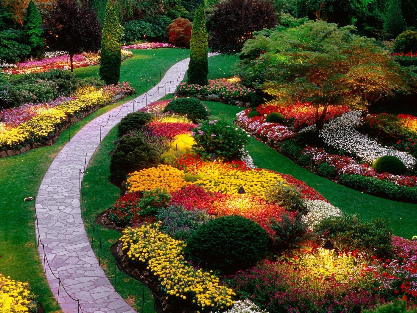 garden-81.jpg