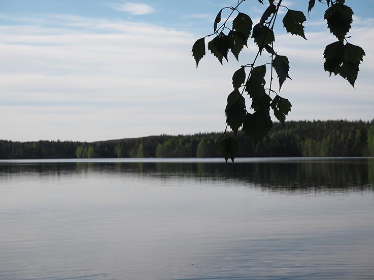 Mökkielämää1.png