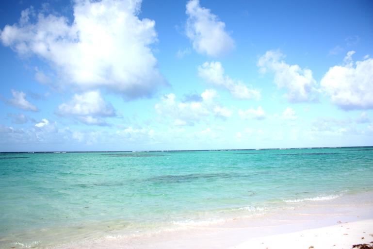 Loma Karibialla6.png