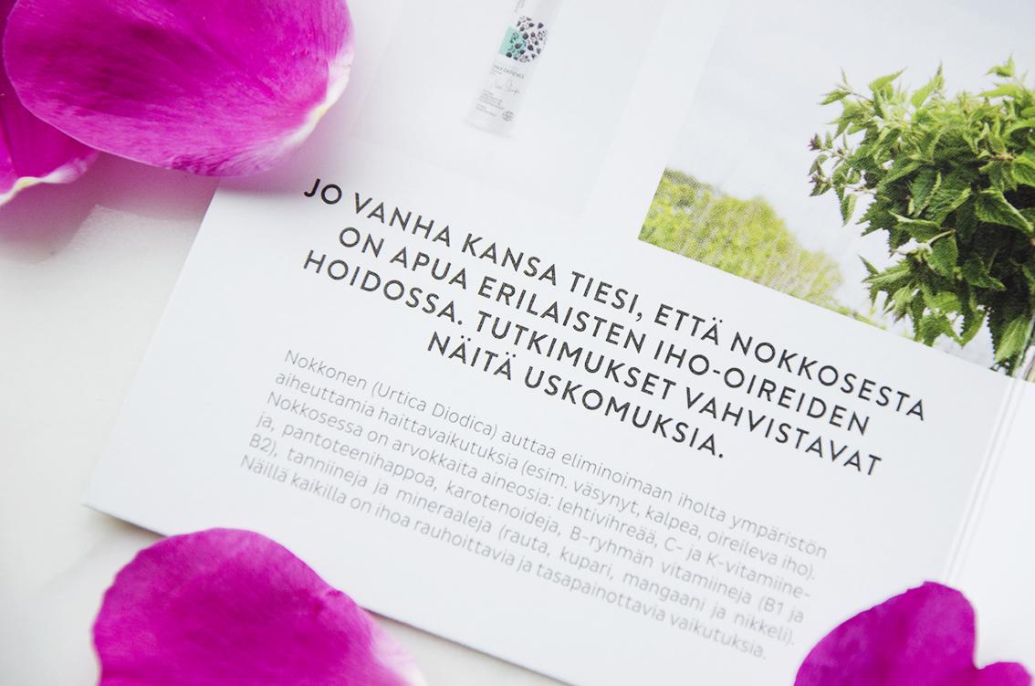 Madara_nokkonen_4.jpg