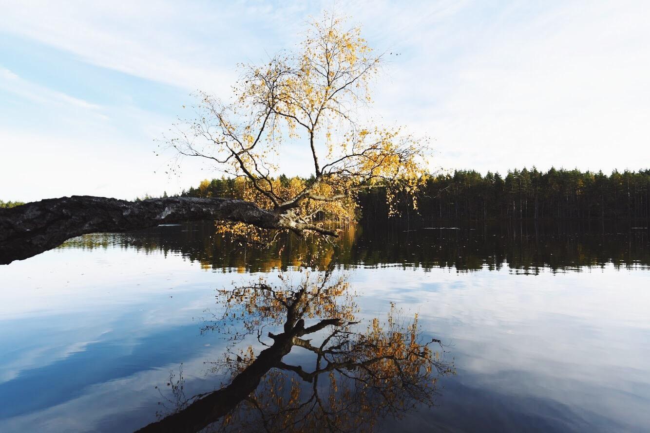 nuuksio_nuuksionationalpark_sundayblondie_2.JPG