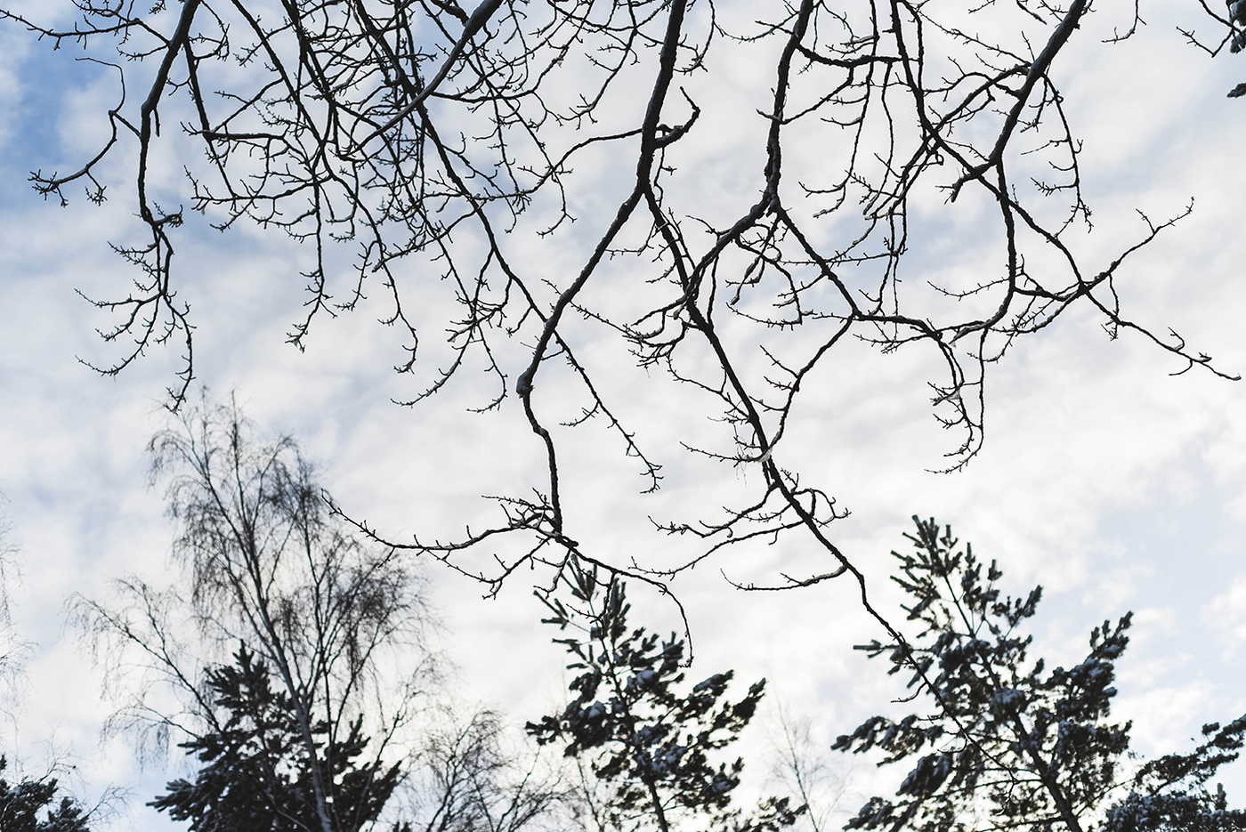 suomi100-itsenaisyyspaiva-sundayblondie-5.jpg