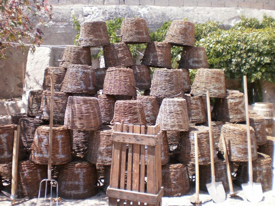 Santorini_38_viini_3.jpg