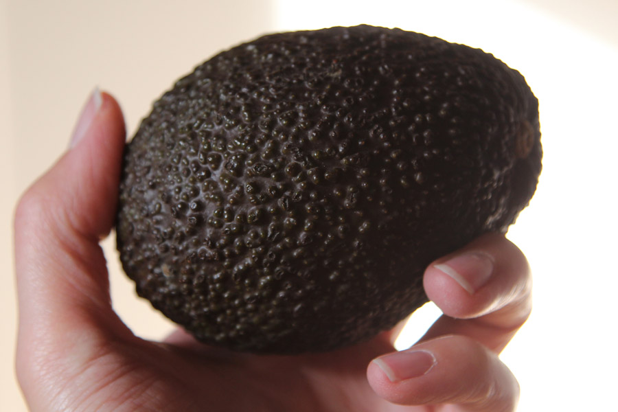 Avocado_3.jpg