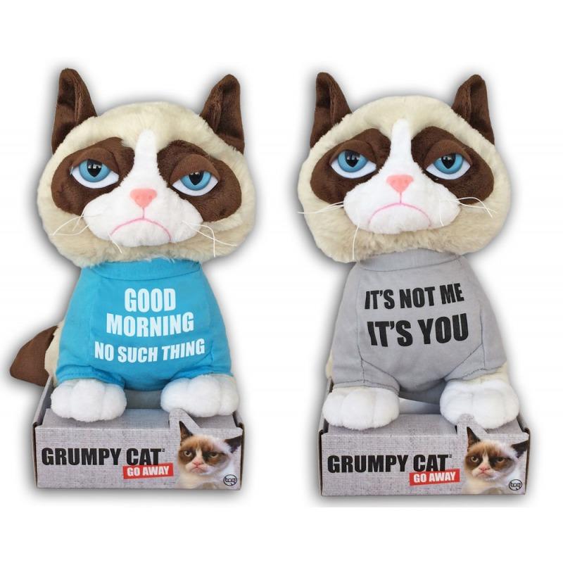 grumpy-cat-paidassa-teksti.jpg