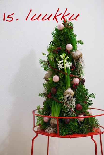 Kukkiva joulukartio