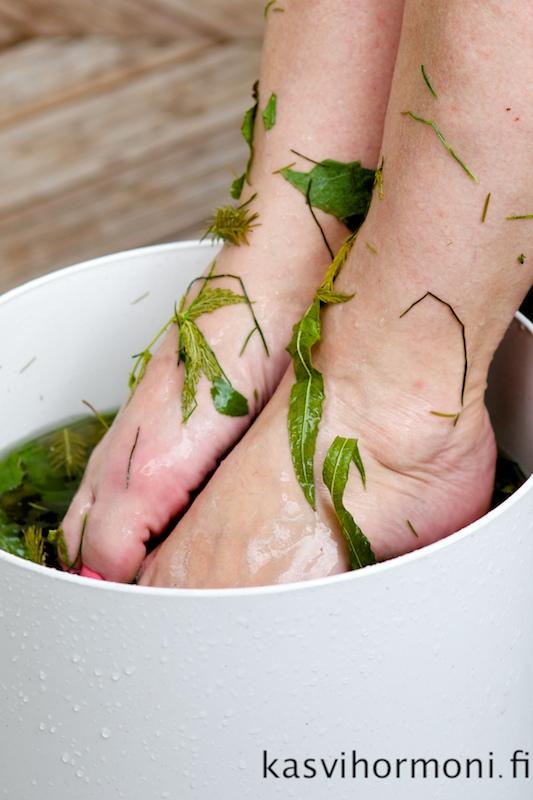 Pihapuuharin silkinpehmeät jalat
