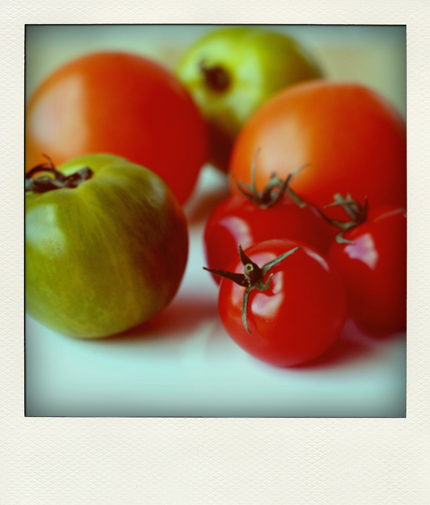 tomatoes-for-soup-pola.jpg