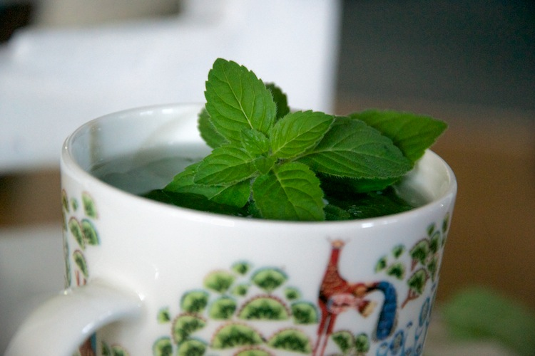 Teetä tuoreesta, kiitos