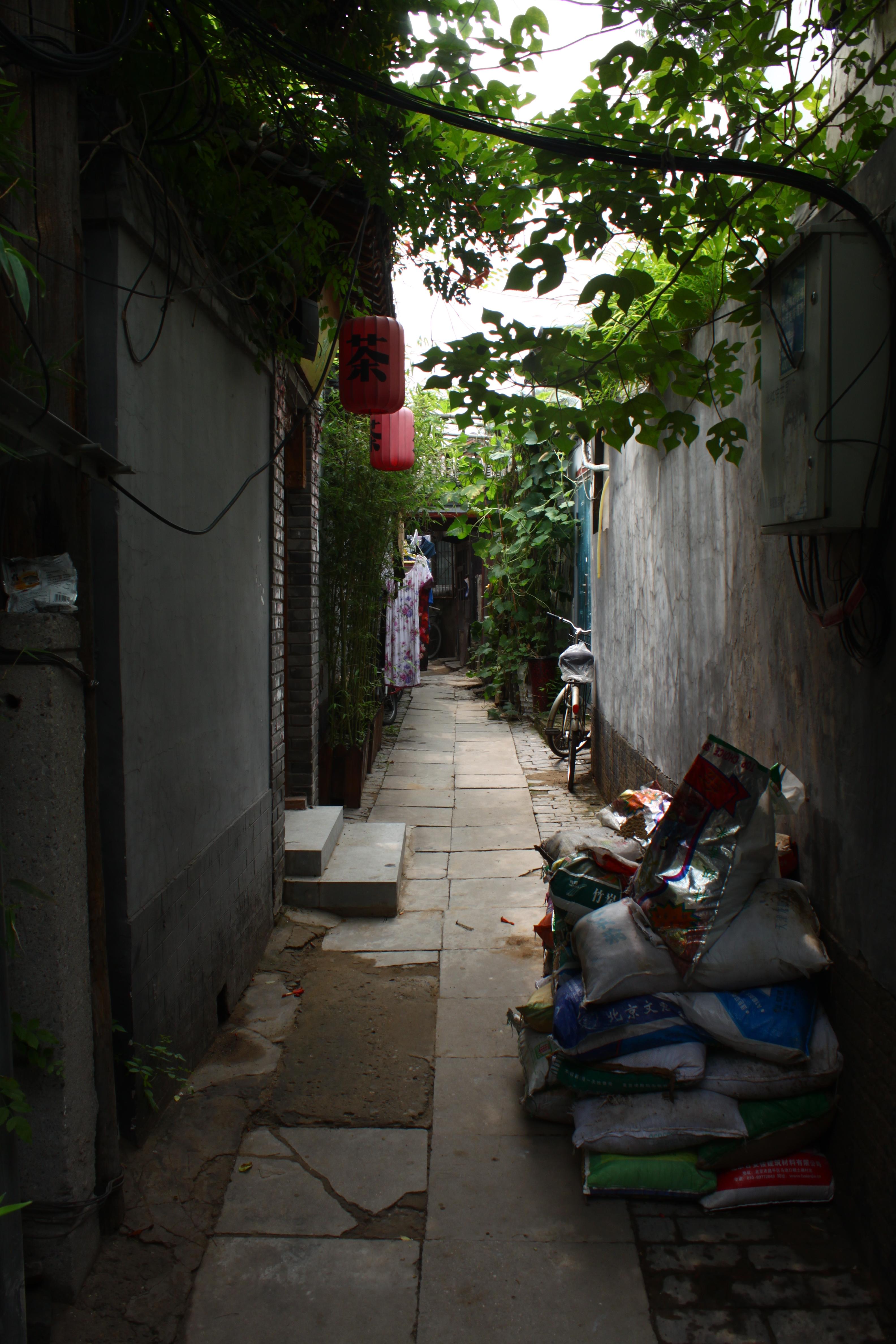 Beijing, Peking, 2015, 7 miljardia äärettömyyttä  (20).JPG