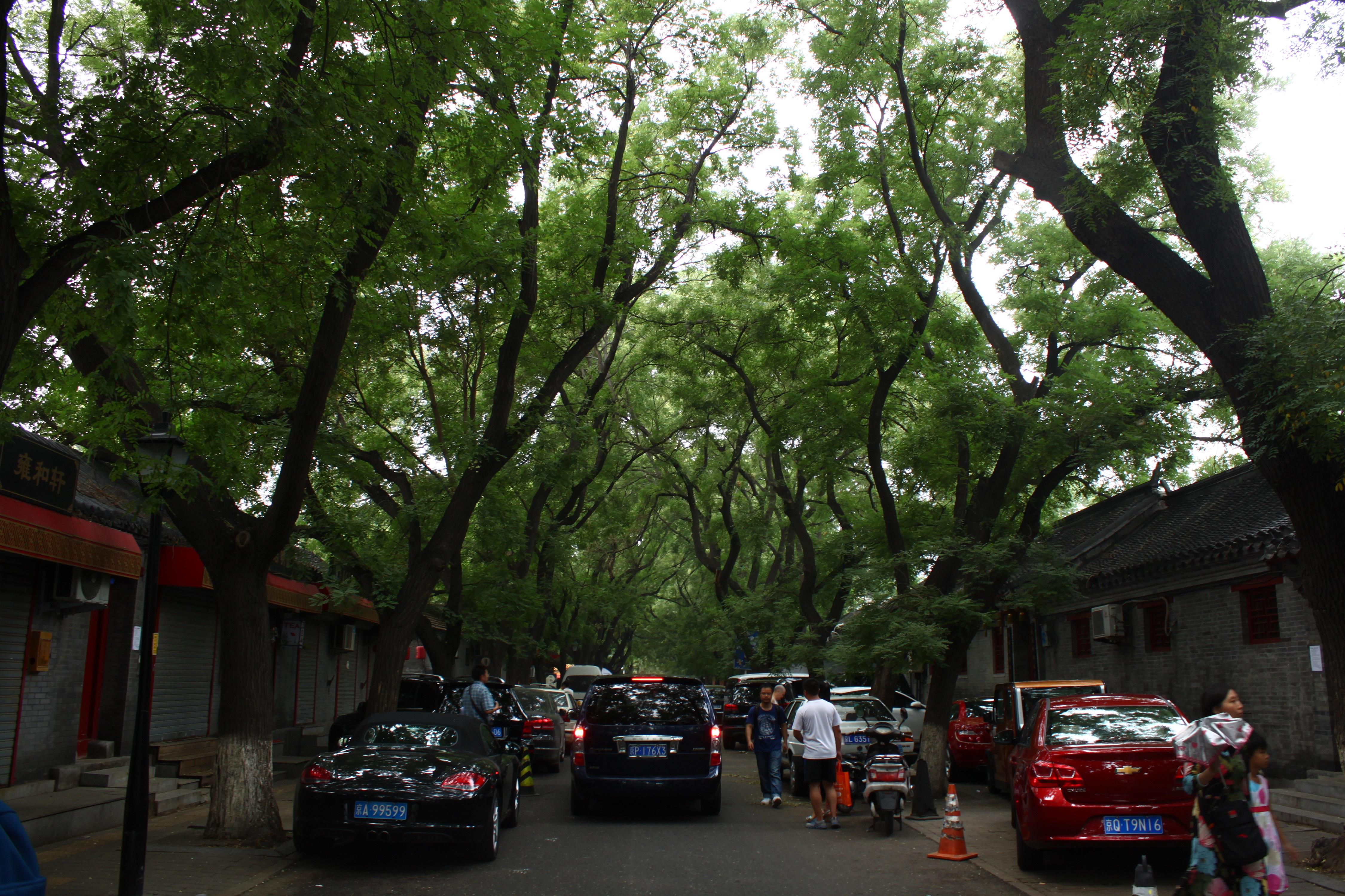 Beijing, Peking, 2015, 7 miljardia äärettömyyttä  (22).JPG