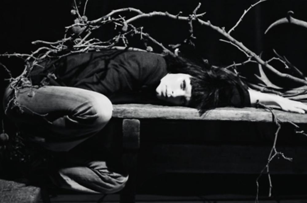 Moreau-Dancian-2011-02he-02.jpg