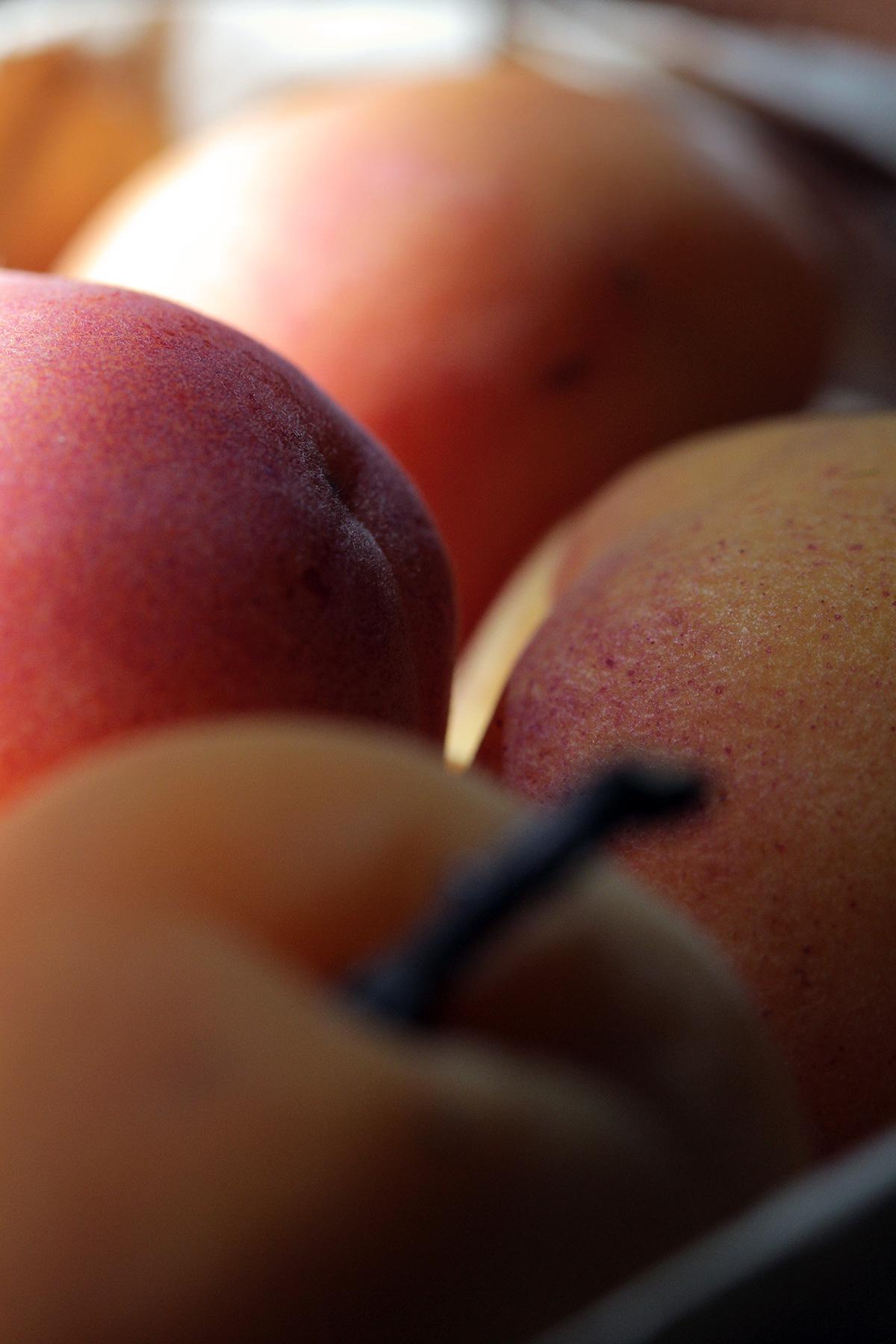 apricots-organic-2_1.jpg