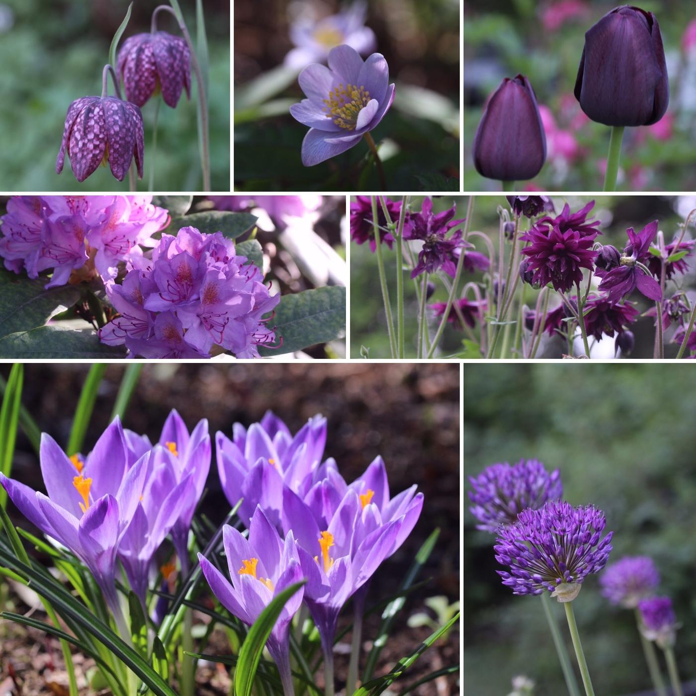 Alkukesän moodboard: violetti