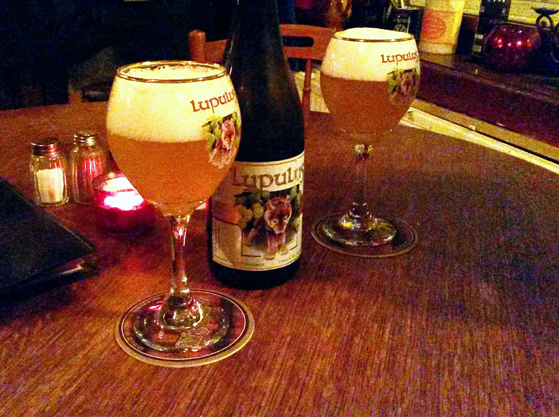 Lupulus belgian beer