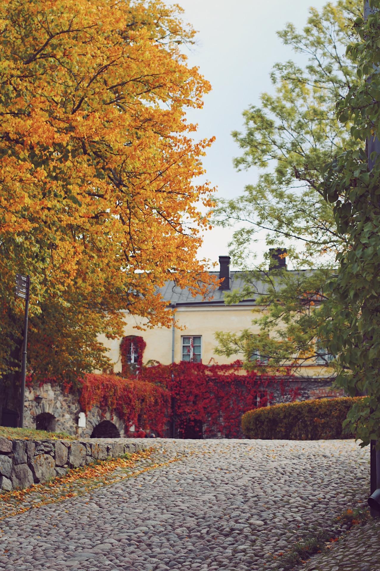 Lähimatkakohteiden ykkönen kesät talvet: Suomenlinna