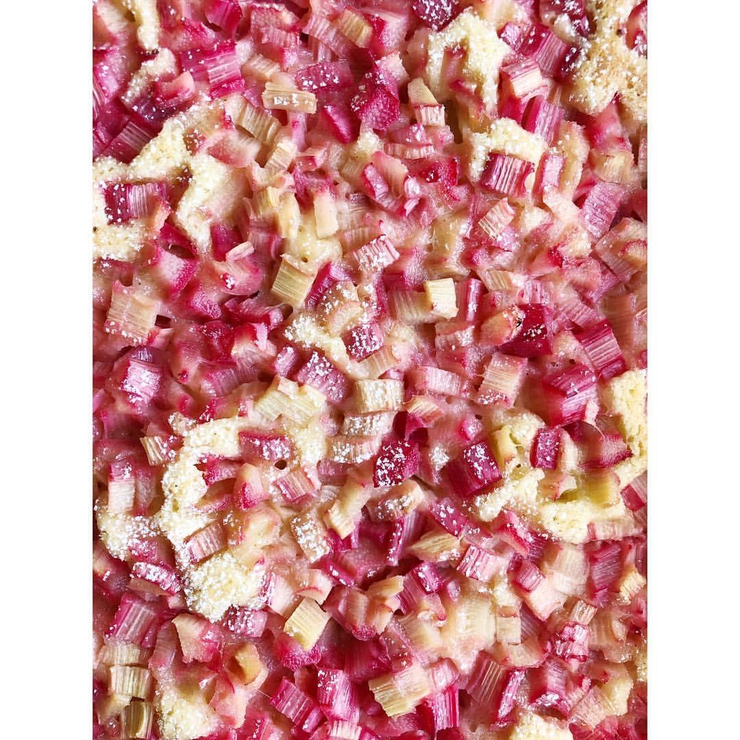Gastronaatti - Raparperipiirakka