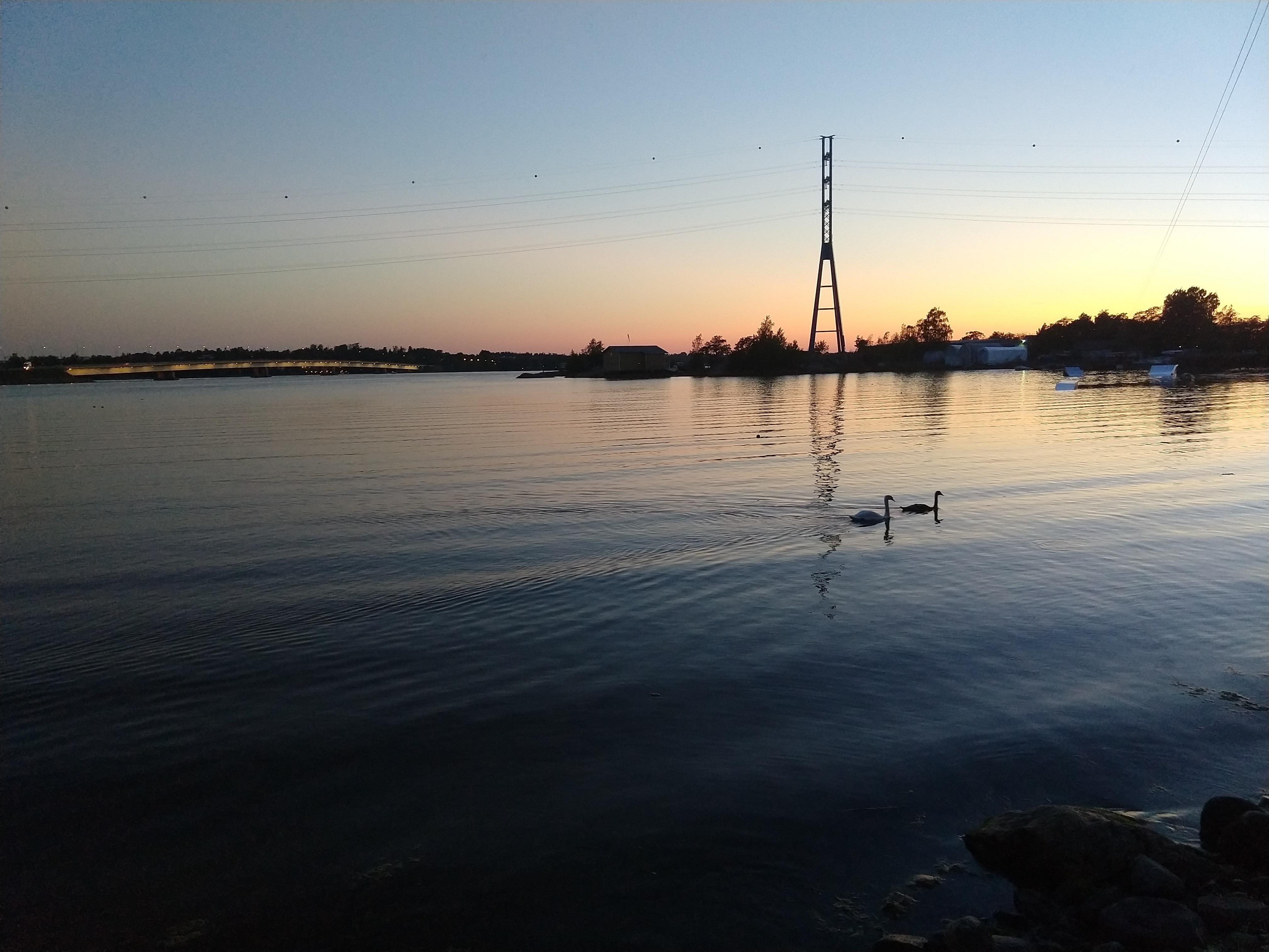 sunset_Helsinki_swans