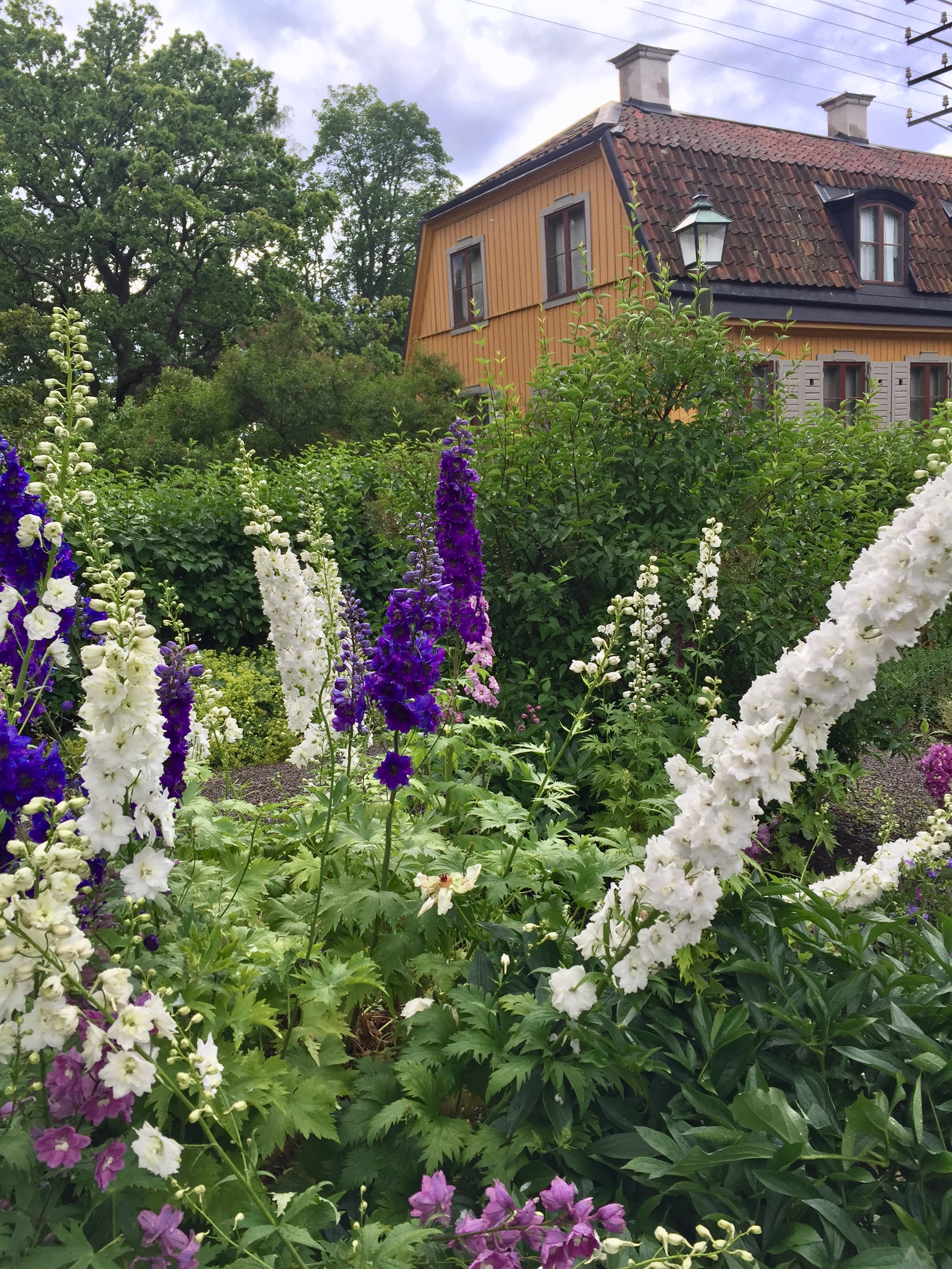 Kukkia_puutarha_talo_skansen