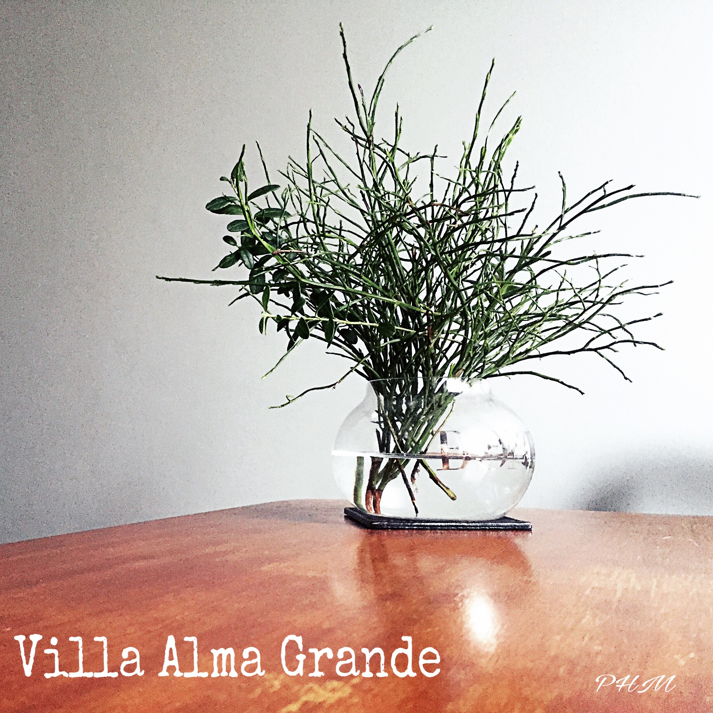 Villa Alma Grande