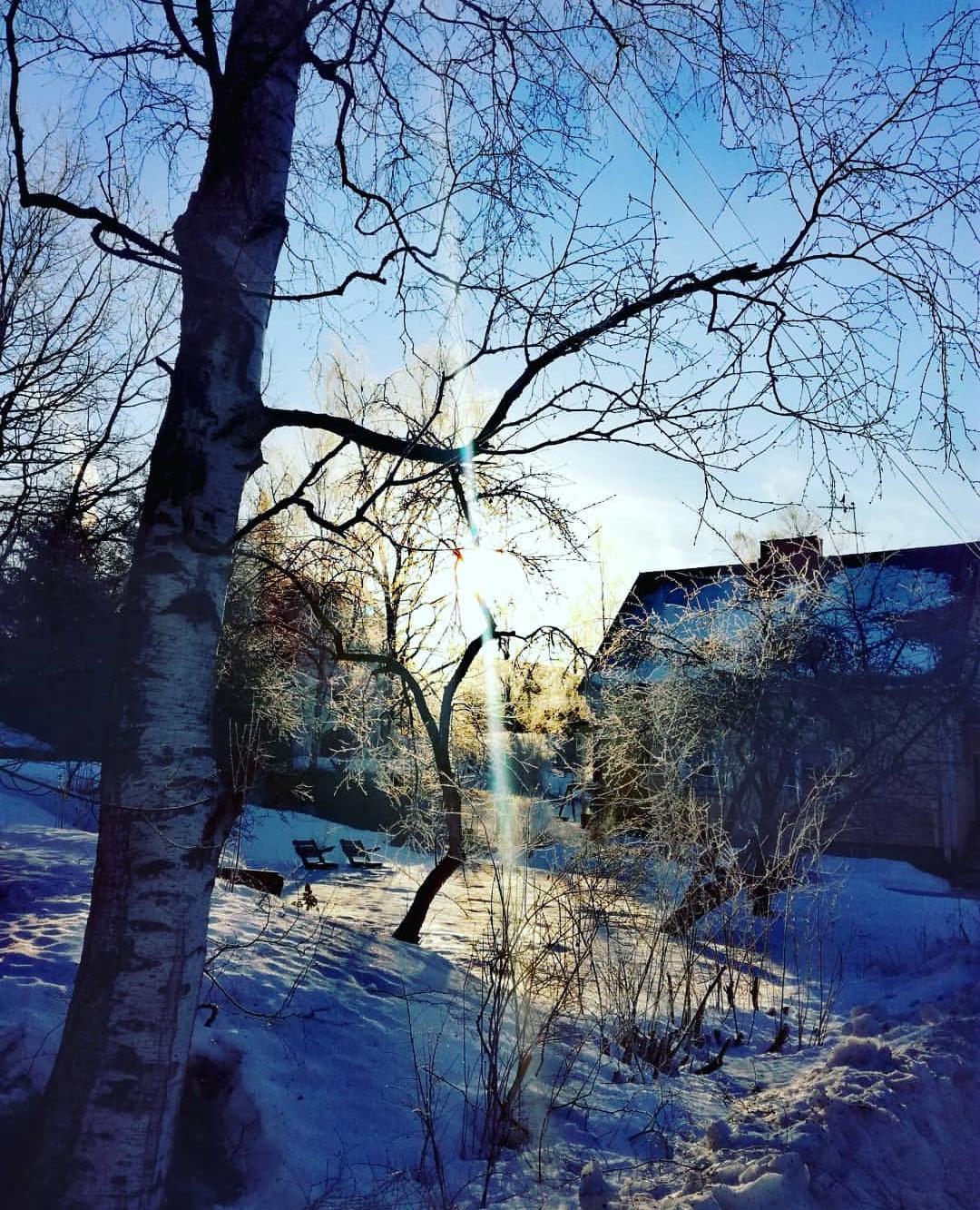 talven aurinko