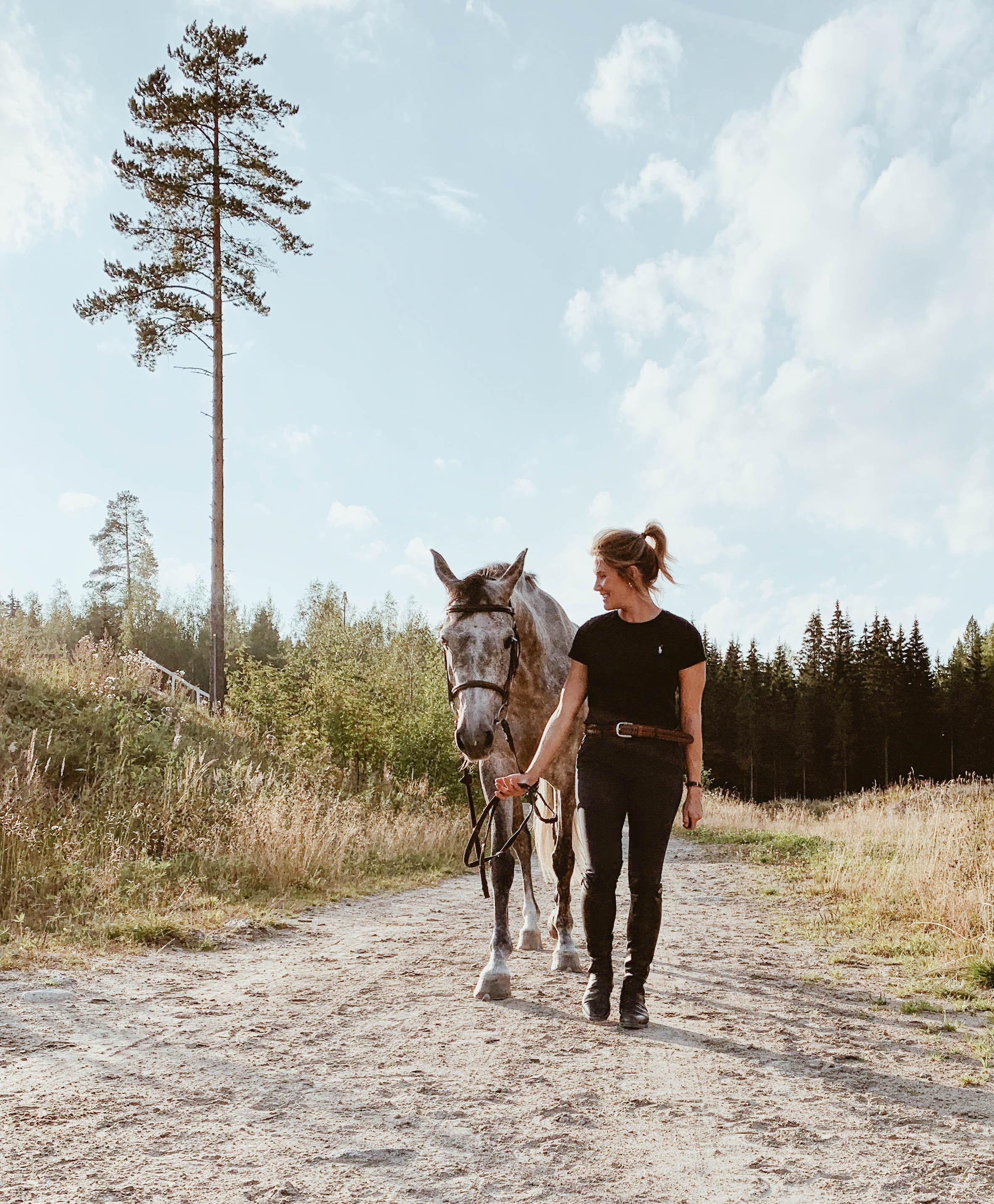 täysin terve hevoseni