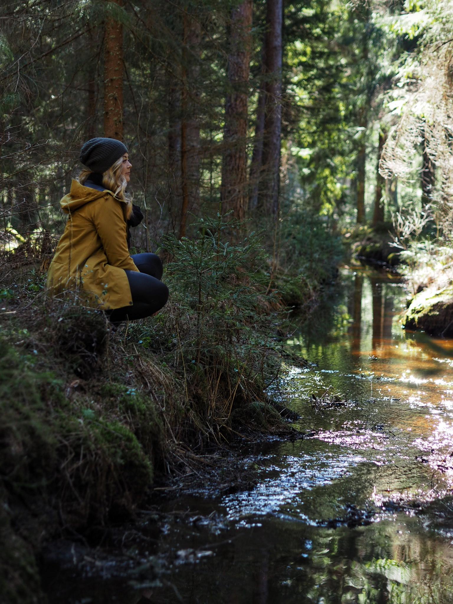 Metsän tuoksu
