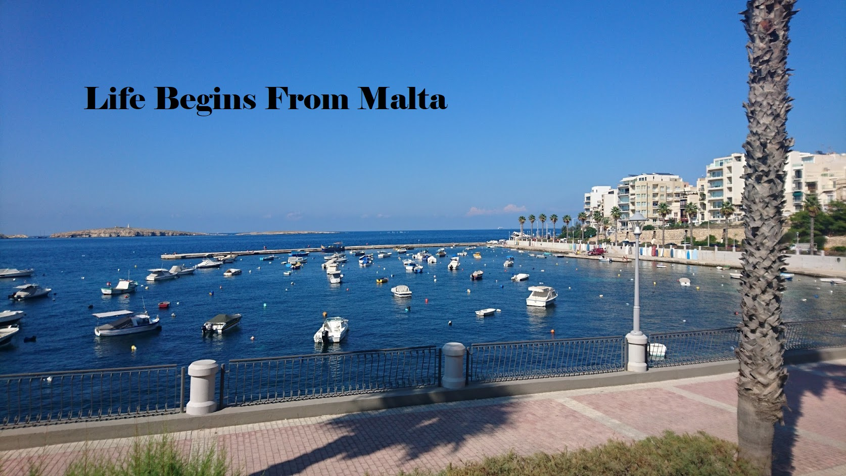 Life Begins From Malta
