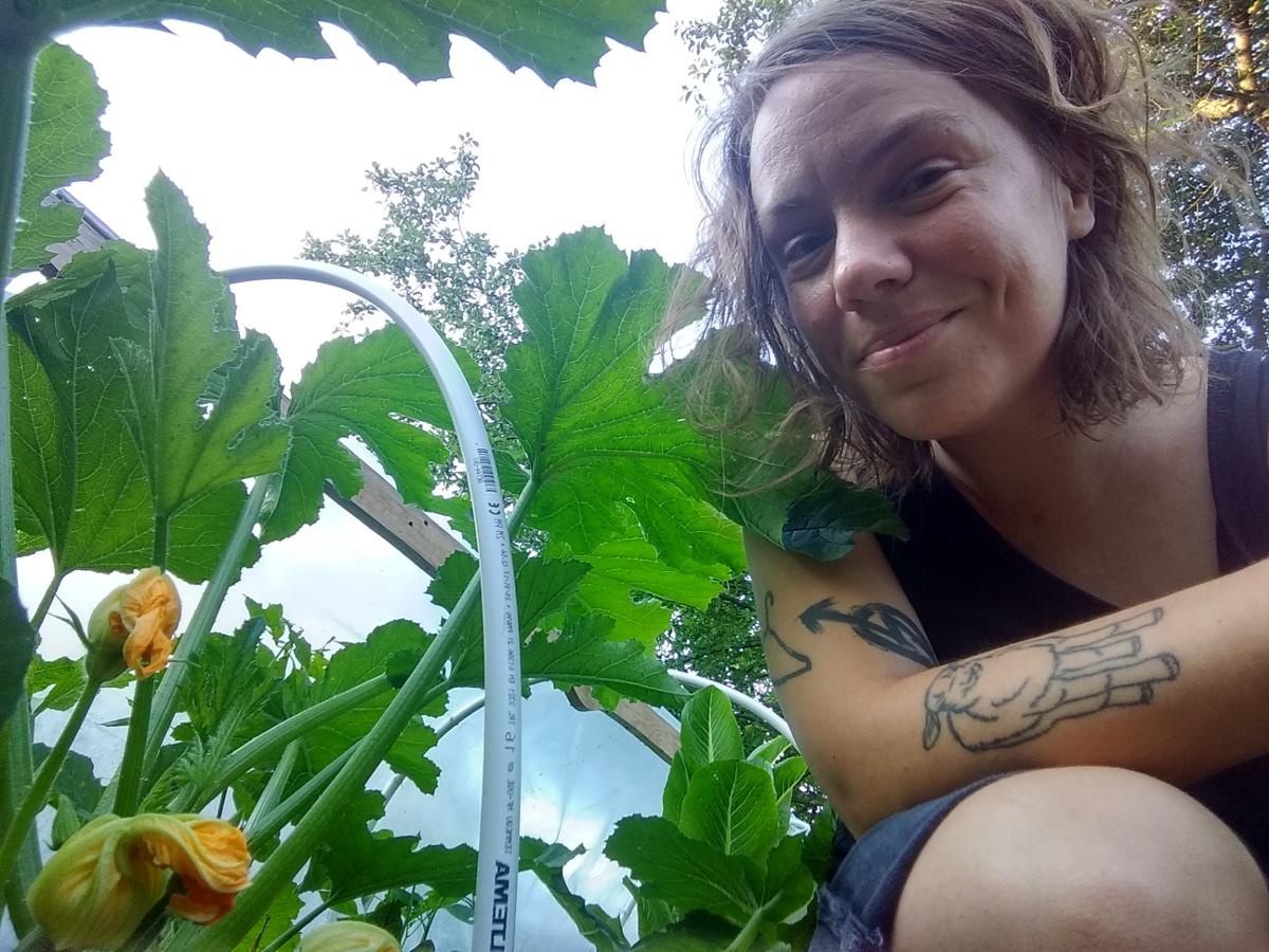 Kasvatan kesäkurpitsoja ja kärsivällisyyttä