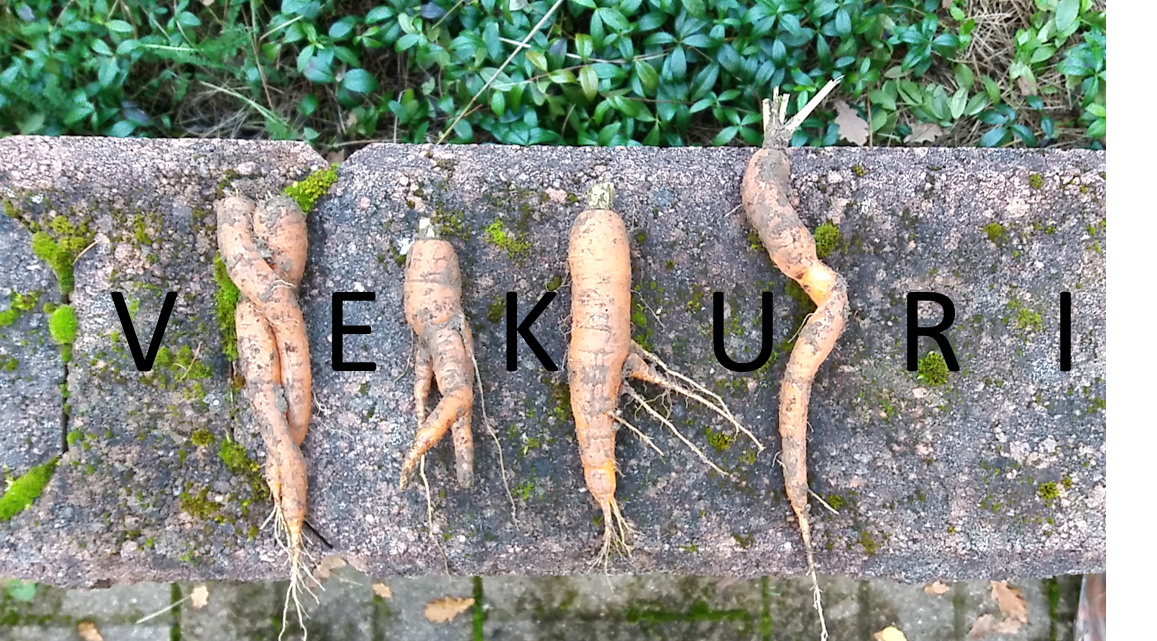 VEKURI