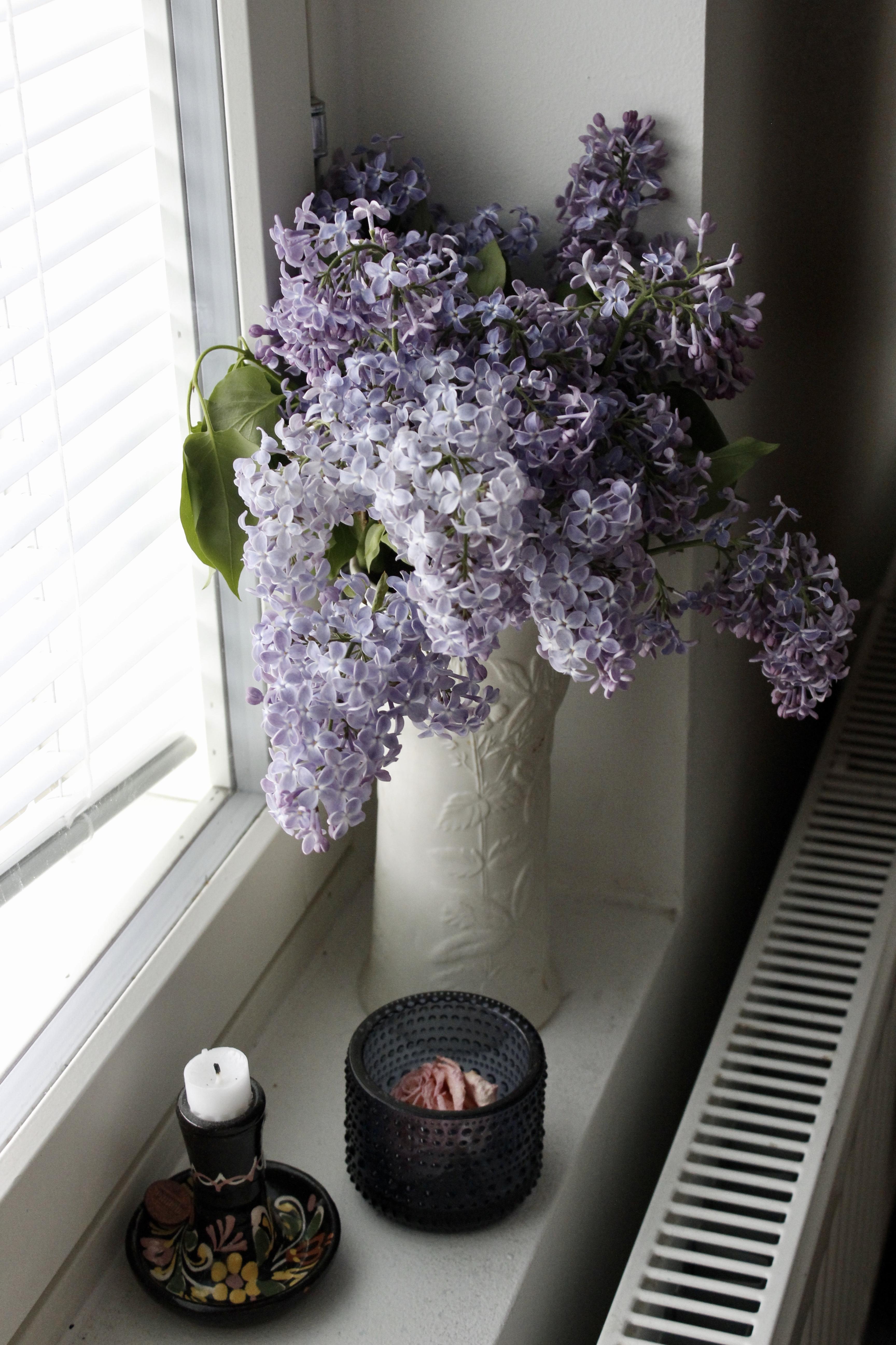 Kesäkuun alun ilahduttavia asioita: koti täynnä kukkia, tv-sarja ja sheet maskit New Yorkista